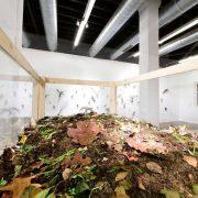 Kompost I: Evde Solucan Kompostu Yapımı